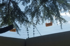 electrical installations coc for Aitken street Eastleigh Edenvale011