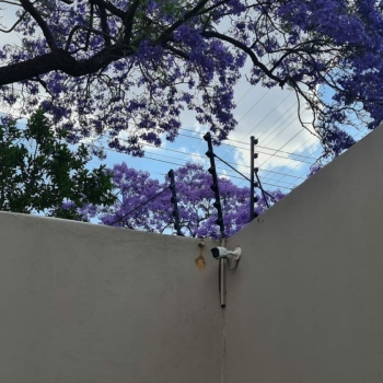 Electrical-Installations-inspected-fence-in-Pretoria0001